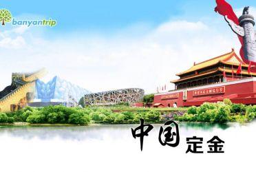 定金专拍- 中国